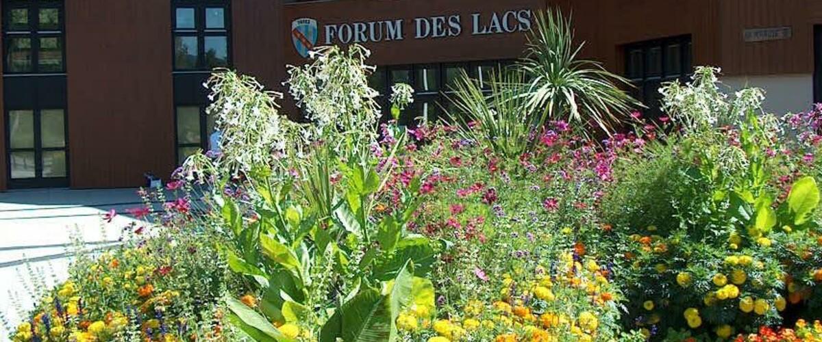 Forum des lacs