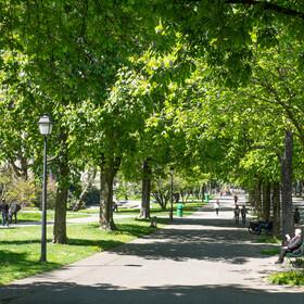 Promenade des Bastions Genève